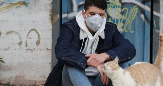 Еще дюжина заболевших коронавирусом в Севастополе