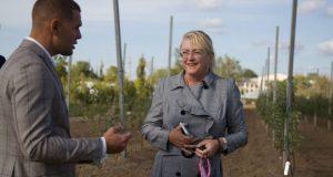 В Правительстве РК видят развитие полуострова через государственно-частное партнерство с КФУ
