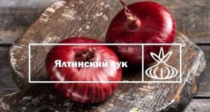 Крымский бренд «Ялтинский лук» участвует во Всероссийском конкурсе «Вкусы России»