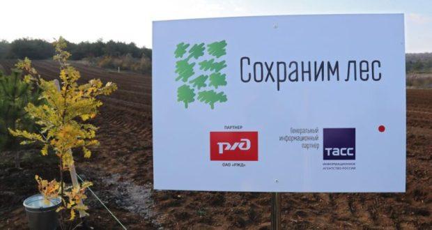 Глава Крыма принял участие во всероссийской акции «Сохраним лес»
