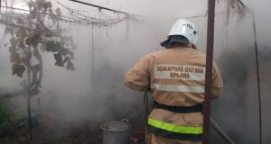 Пожар в Щебетовке и еще 9 возгораний минувших суток в Крыму