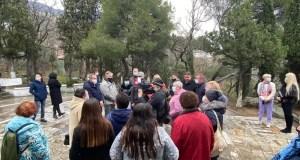 Парк или стройка в Алупке – ответить должны… суды
