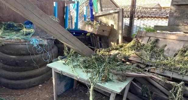 В Симферопольском районе задержали подозреваемого в хранении наркотиков