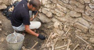 Учёные КФУ получили грант на исследование могильника Опушки в Симферопольском районе