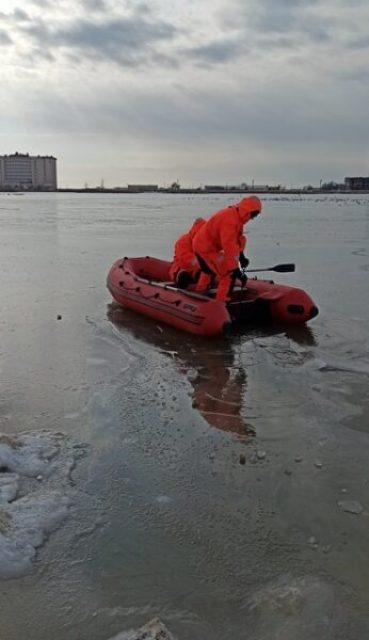 В Евпатории на озере Сасык-Сиваш в лед вмерзли местные обитатели – лебеди