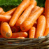 С 30 января в Симферополе стартуют сельскохозяйственные ярмарки