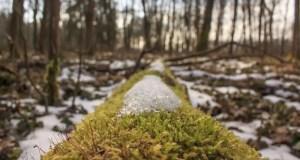 От дождя до снега, от минуса до плюса. Погода в Крыму