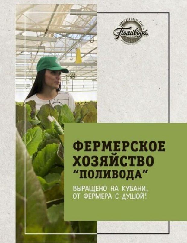 Как подвигается проект Севастопольского Общественного Движения «Доброволец» «Настоящие продукты»