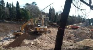 Наталья Поклонская озаботилась вырубкой деревьев в Форосском парке
