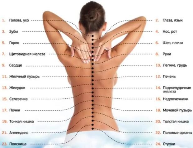 массаж остеохондроз
