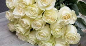 Искренность чувств и пожеланий, счастье и настроение праздника – в букетах цветов