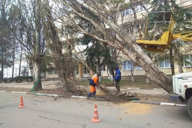 В Симферополе устраняют последствия штормового ветра