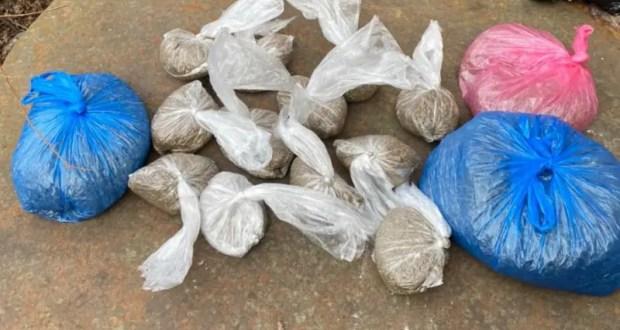 Сотрудники ялтинской полиции изъяли у местного жителя более полутора кг марихуаны