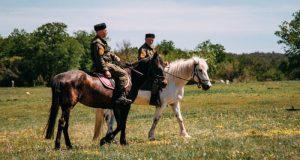 Севастопольские леса мониторят казачьи конные патрули