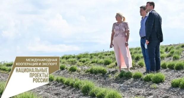 Правительство Крыма планирует разработать «дорожную карту» экспортера
