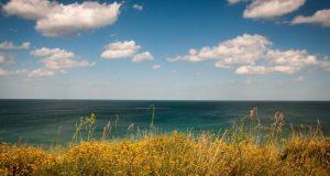 Саки - в топ-10 популярных городов для отдыха на озёрах в августе