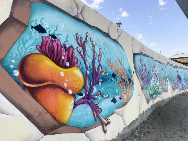 Художники арт-кластера «Таврида» превратили пляж в Судаке в уголок подводного мира