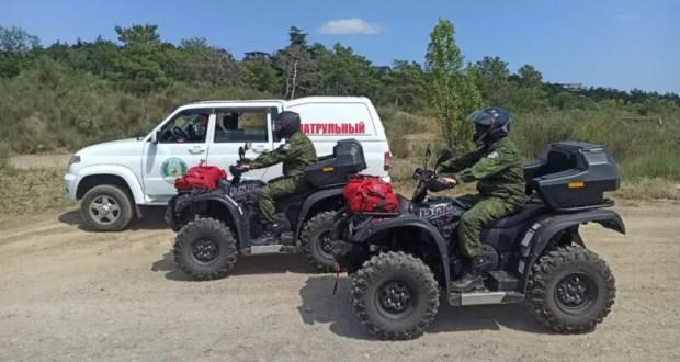 Сотрудники Минприроды Крыма ежедневно проводится мониторинг пожарной опасности в лесах
