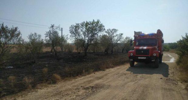 За последние два дня в Крыму выгорело два гектара растительности