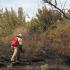 За сутки в Севастополе огонь выжег почти 6 гектаров сухой травы