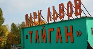 ЧП в крымском парке львов «Тайган»: маленький ребенок получил травму руки