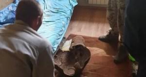 В Симферополе мужчина хранил у себя дома... авиабомбу
