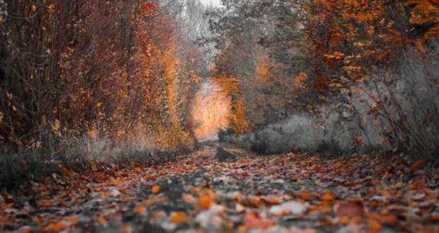 9 октября – день Иоанна Богослова. Нехорошие дороги