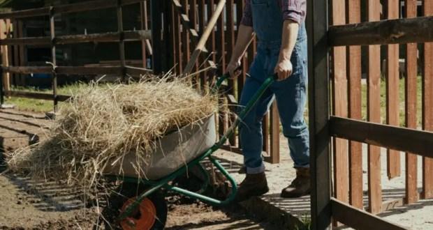 У крымских аграриев растут зарплаты