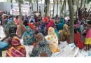 রংপুরের হরকলিতে উঠান বৈঠকে স্বতন্ত্র চেয়াম্যান প্রার্থী ইকবাল