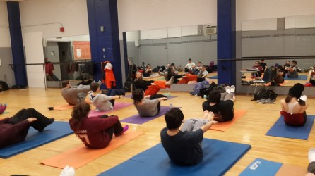 Students are participating under the direction of qualified yoga teachers of Ananda Marga