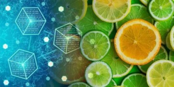 citricos-rastreabilidade-blockchain-federal