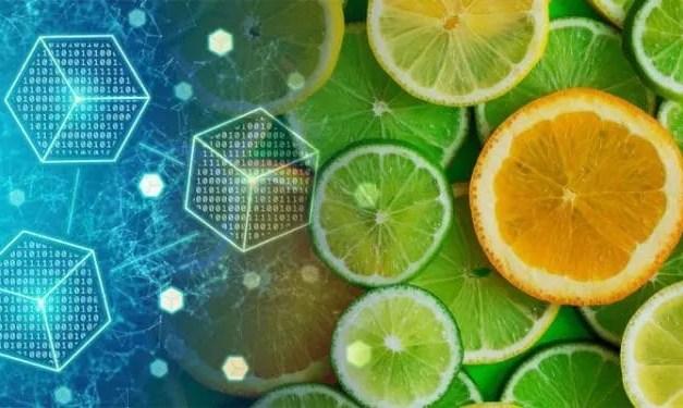 Argentina usará a Blockchain Federal para certificar a rastreabilidade dos cítricos
