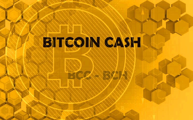 La billetera Blockchain ya acepta Bitcoin Cash – CRIPTO