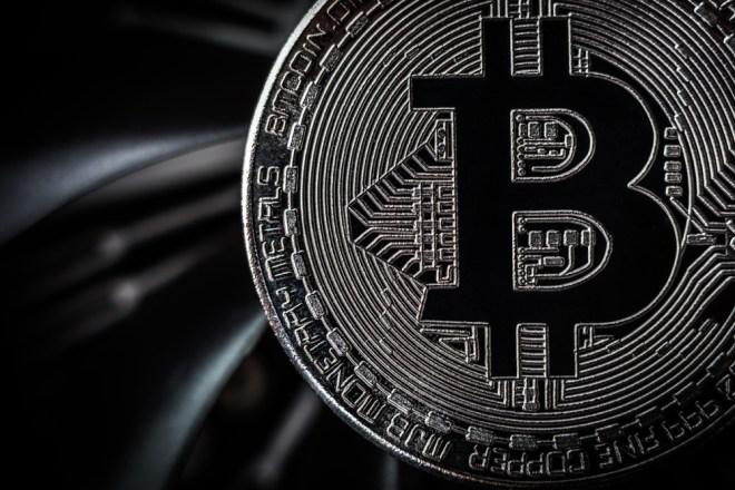Bitcoin Cryptobulls