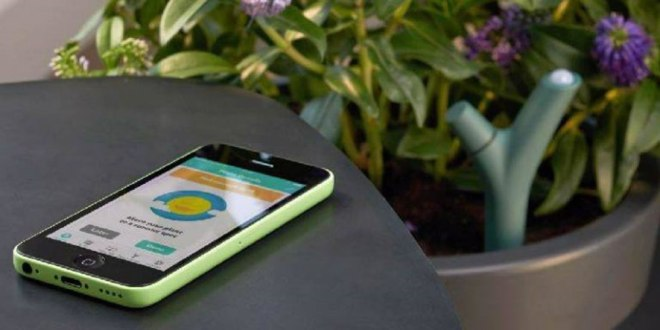 Sensores para el jardin IoT