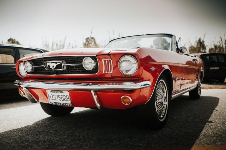 Mustang Criptomonedas