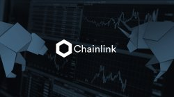 Chainlink en review