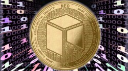 NEO en review