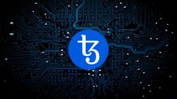 Tezos en review