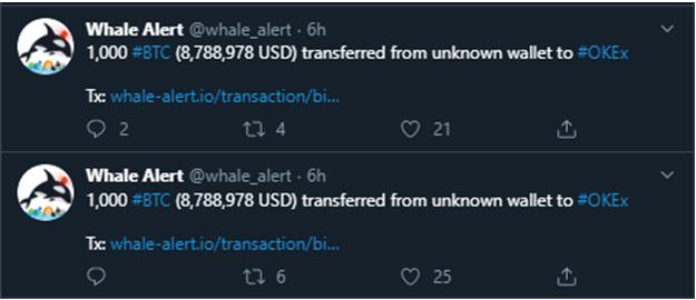 Movimiento de una ballena crypto por 1000 BTC