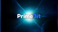 ¿Cómo PrimeBit ofrece ganancias ilimitadas con riesgo limitado?