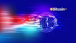 ¿Cómo las ballenas crypto están impulsando el precio de Bitcoin y Bitcoin SV para arriba?