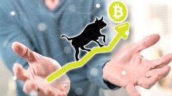 Bitcoin salta por encima de los USD 8.500