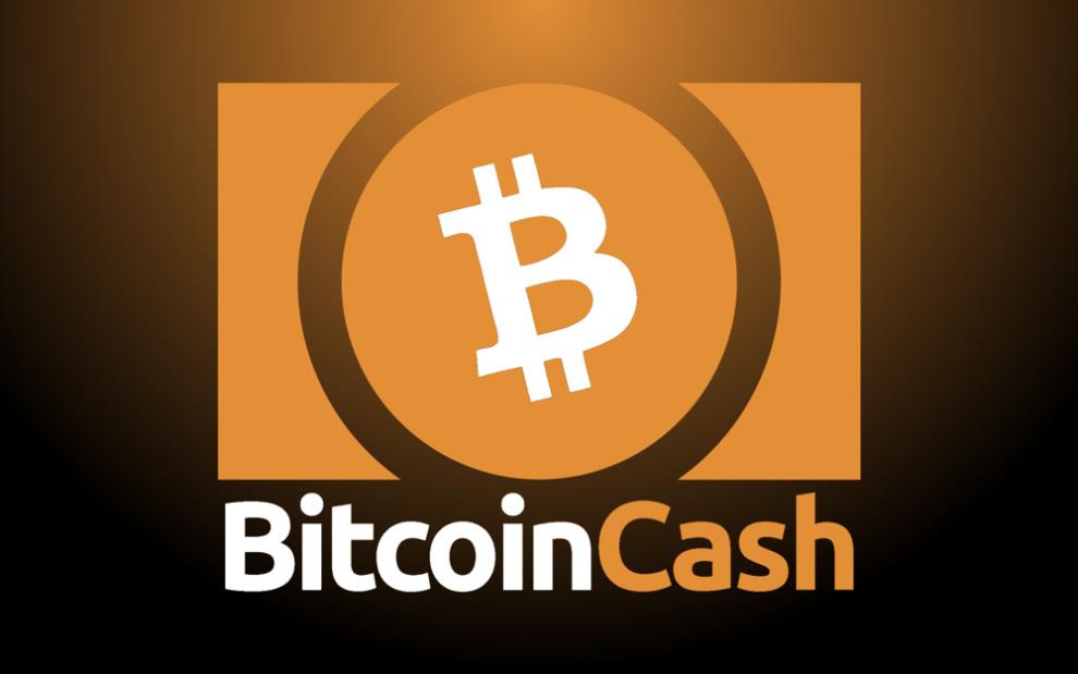 cuanto cuesta un bitcoin cash voglio diventare ricco sfondato