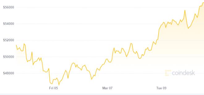 Según Tyler Winklevoss Bitcoin va rumbo a los 60.000 dólares. Fuente: CoinDesk