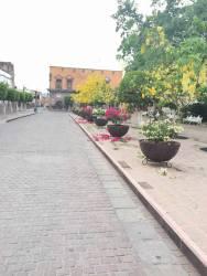 Trabajo que embellece al Jardín Morelos