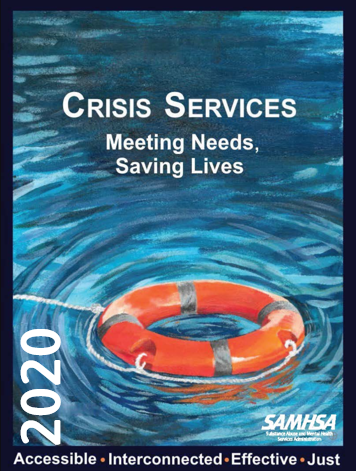 2020 Crisis Services Meeting-Needs