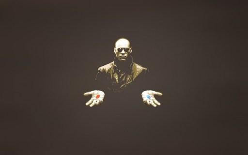matrix percepcion realidad