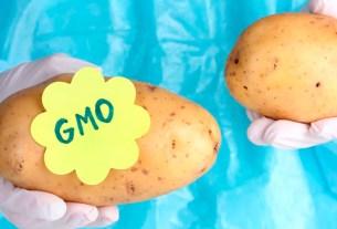 ГМо,маркировка,натуральное,картофель