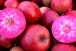 яблоки,Red Moon,Clementi Srl,Bio Meran